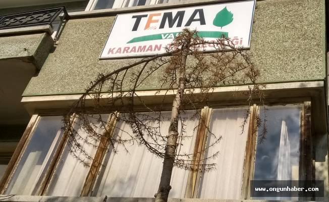 """KARAMAN TEMA, """"-MIŞ GİBİ YAPMA!!!"""""""