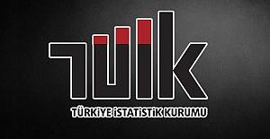 Türkiye Ekonomisi Yüzde 9,9 Daraldı